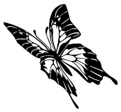 Butterfly 3 Decal Sticker