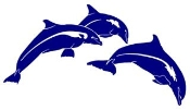 3 Dolphins Decal Sticker
