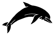 Dolphin v2 Decal Sticker