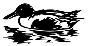 Duck 1 Decal Sticker
