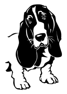 Bassett Hound 5 Decal Sticker