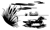 Duck Scene Decal Sticker
