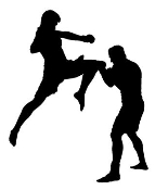 MMA Flying Knee Decal Sticker