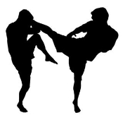 MMA Kick 2 Decal Sticker