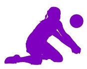 Volleyball Player Silhouette v11 Decal Sticker