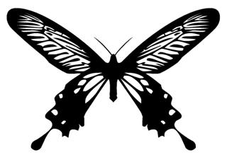Butterfly 15 Decal Sticker