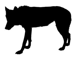Wolf Silhouette 1 Decal Sticker