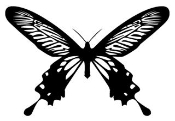 Butterfly v15 Decal Sticker