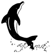 Dolphin Splash Decal Sticker