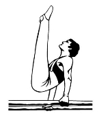 Gymnast Male Bars Decal Sticker