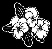 Hibiscus Flowers v4 Decal Sticker
