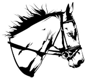 Horse Head v4 Decal Sticker