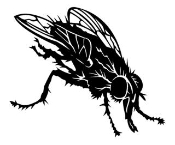 Fly v2 Decal Sticker