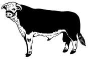 Cattle v1 Decal Sticker