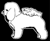 Bichon Frise v2 Decal Sticker