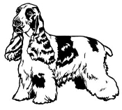 Cocker Spaniel Decal Sticker