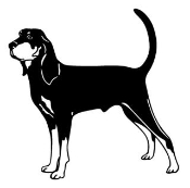 Coonhound Decal Sticker
