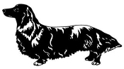 Dachshund Decal Sticker