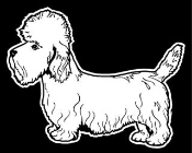 Dandie Dinmont Terrier Decal Sticker