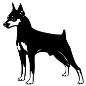 Doberman v2 Decal Sticker