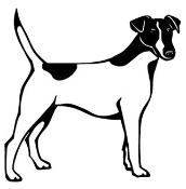 Fox Terrier Decal Sticker