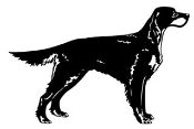 Irish Setter Decal Sticker