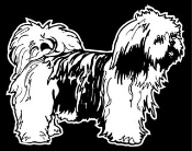 Lhaso Apso Decal Sticker