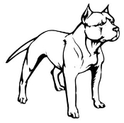 Pitbull Decal Sticker