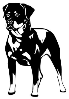 Rottweiler Decal Sticker