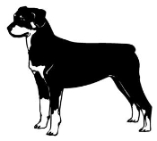 Rottweiler v2 Decal Sticker