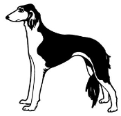 Saluki Decal Sticker