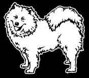 Samoyed Decal Sticker