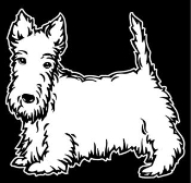 Scottish Terrier Decal Sticker
