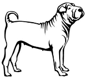 Shar-Pei Decal Sticker