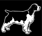 Springer Spaniel v2 Decal Sticker
