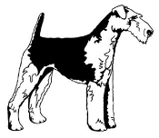 Welsh Terrier Decal Sticker