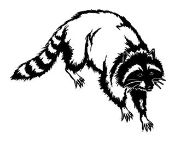 Raccoon v1 Decal Sticker