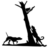 Raccoon in Tree 1 Decal Sticker