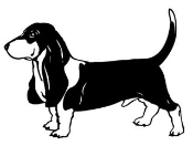 Bassett Hound v4 Decal Sticker