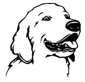 Golden Retreiver Head Decal Sticker