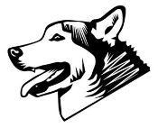 Husky Head Decal Sticker