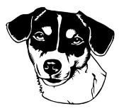Jack Russell Head v2 Decal Sticker