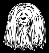 Lhasa Apso Head Decal Sticker