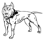 Pit Bull v2 Decal Sticker