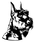 Schnauzer Head Decal Sticker