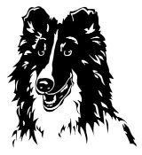 Shetland Sheepdog Head Decal Sticker