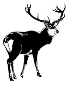 Deer v4 Decal Sticker