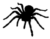Tarantula v1 Decal Sticker