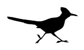 Road Runner Silhouette v4 Decal Sticker