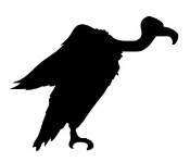 Vulture Silhouette Decal Sticker